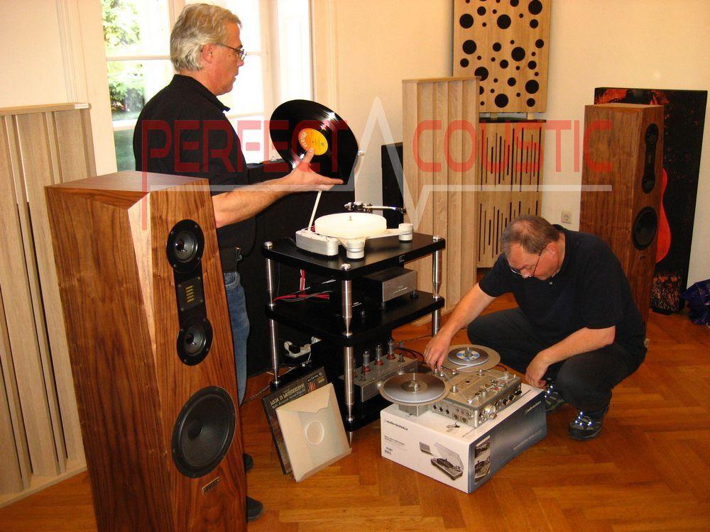 Acoustic Absorber in Barabas villa