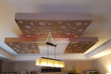 Paneles acústicos de techo