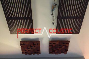 Trampa para bajos en el techo (2)
