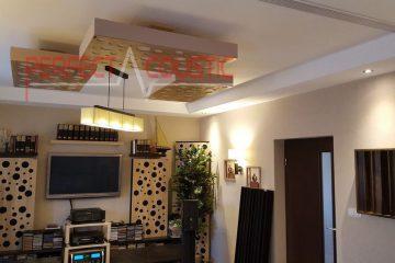 paneles acústicos de techo (2)