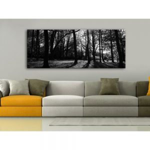 wall photo acoustic elements (3)